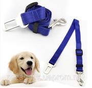 Ремень для обеспечения безопасности Вашей собаки в автомобиле